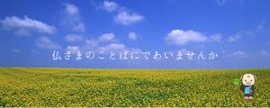 https://minamimido.jp/books/