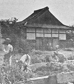 戦後の仮本堂